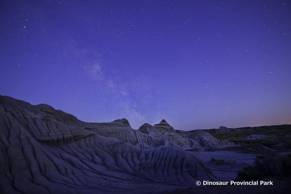 州立恐竜公園_写真クレジット要.jpg