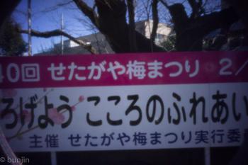 DSC03192.jpg