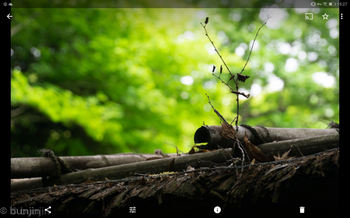 Screenshot_20180609-152736.jpg